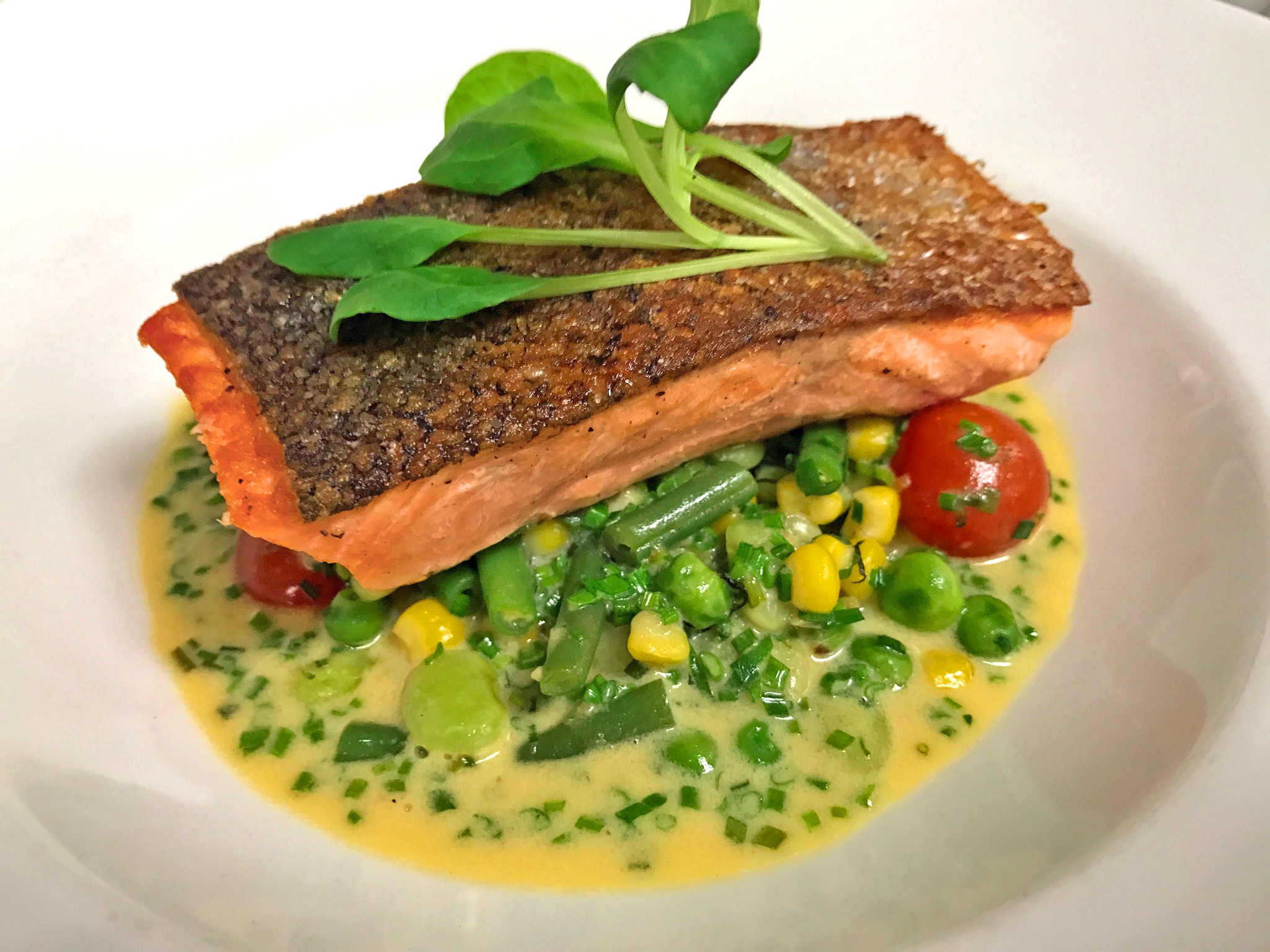 Atlantic Salmon - cassis succotash, corn milk