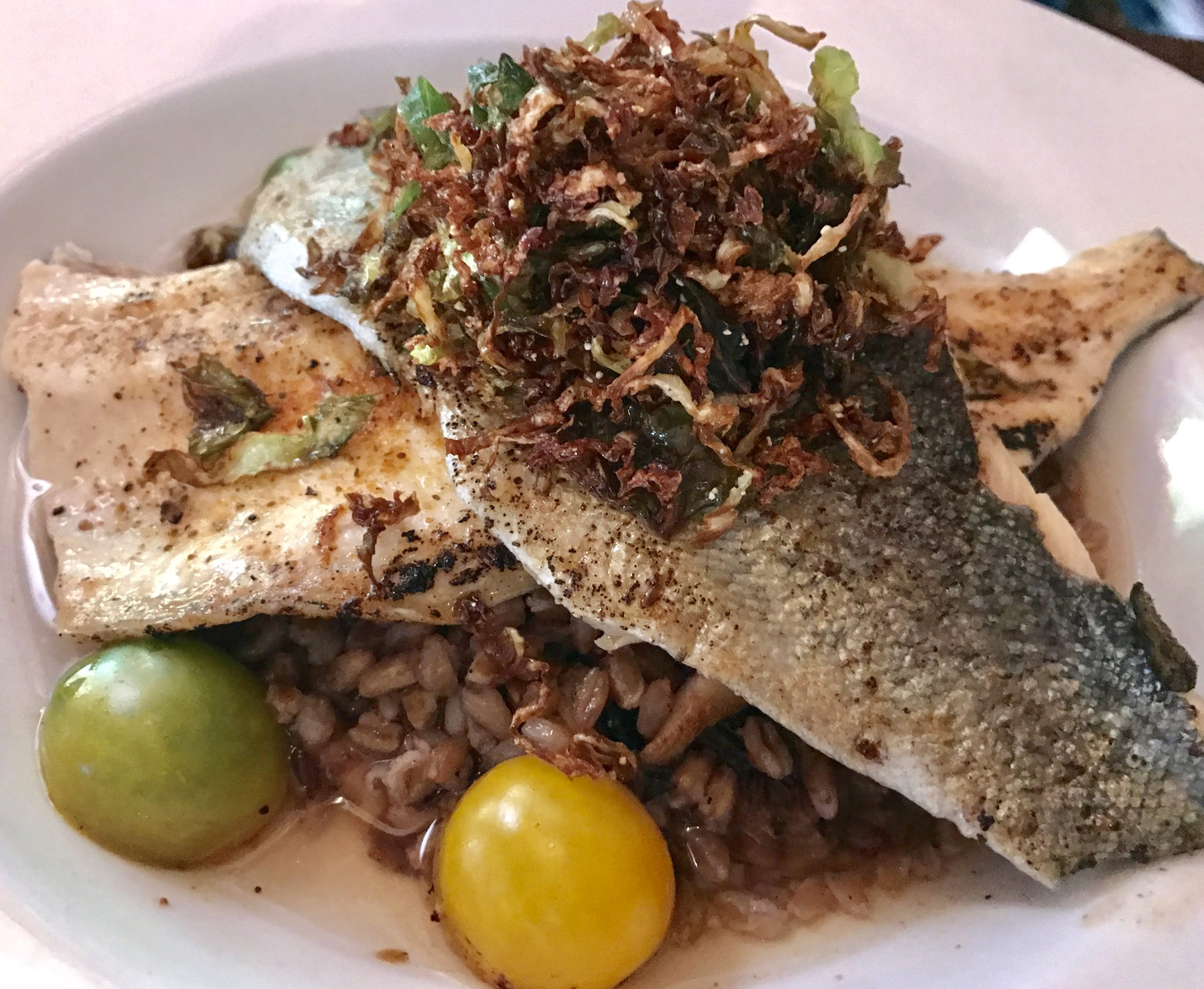 The Galley - Rainbow Trout Special
