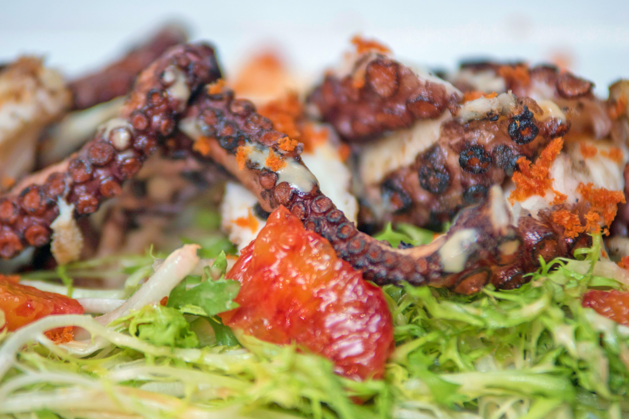 Grilled Octopus - blood orange, grated chorizo, frisee, garlic crema