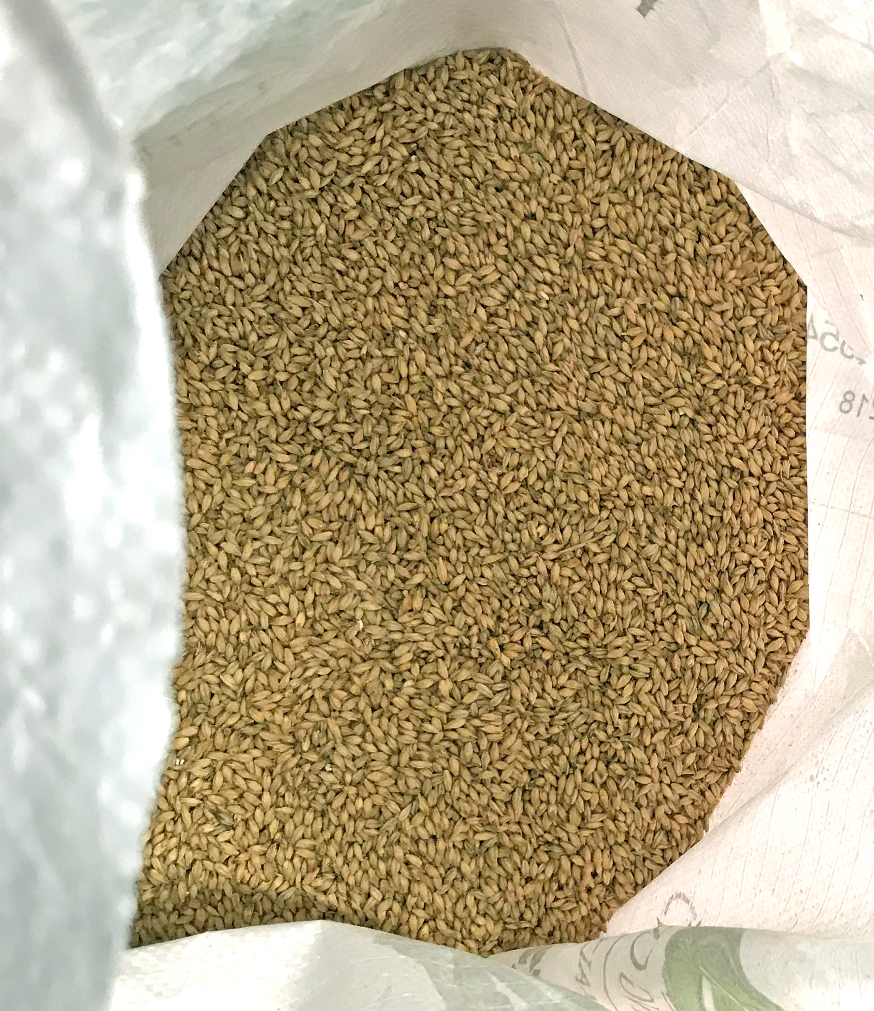 2-Row Malt - base malt found in most beers