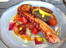 10 Best Octopus Dishes in St Petersburg & St. Pete Beach FL 2020