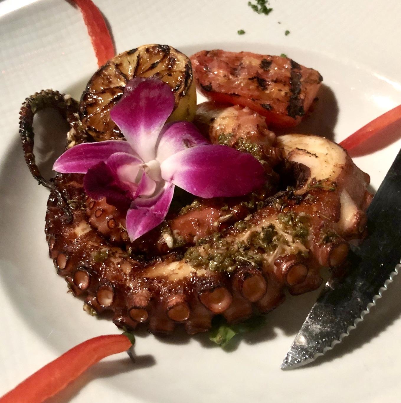 Gratzzi Octopus Special