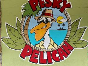 Pesky Pelican Logo