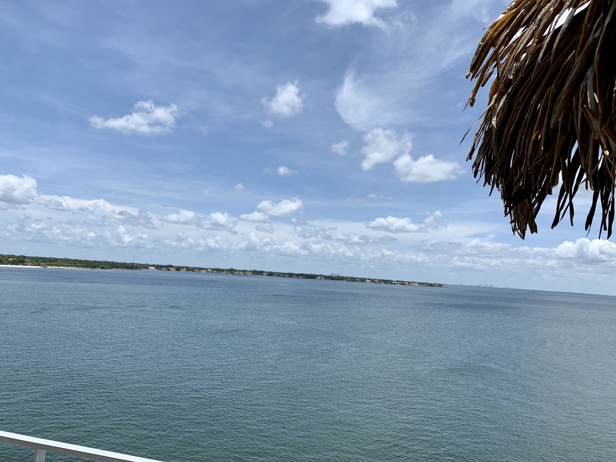 Pier Teaki at the St Pete Pier - View from the back bar facing Tampa Bay.