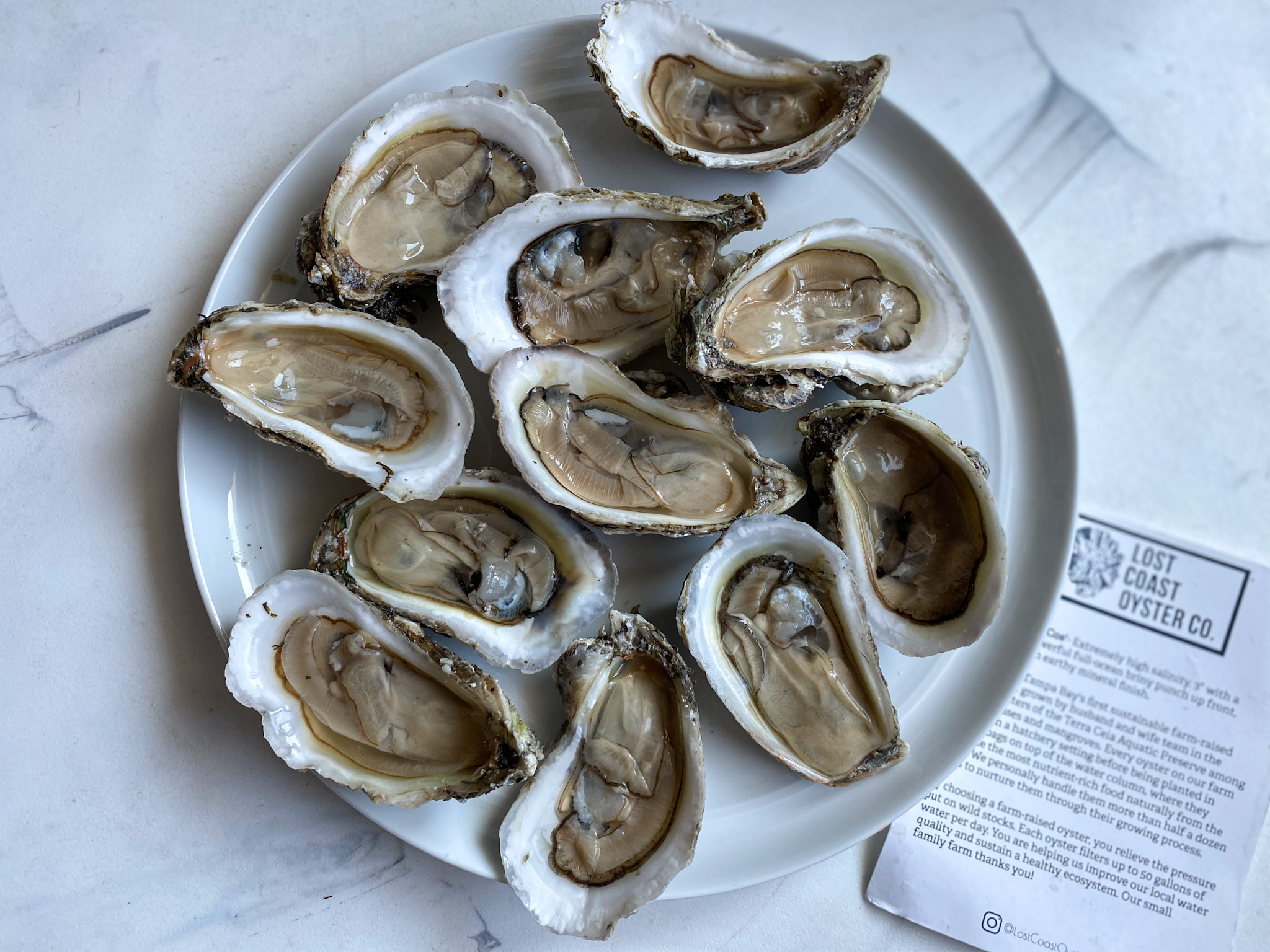 Shucked Lost Coast Oysters