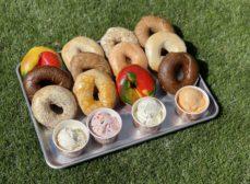 Breaking News: Kosher New York Bagels in Downtown St Pete